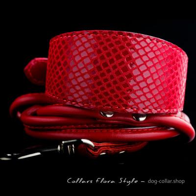 Leather dog collar & leash for daily use - for Italian Greyhound, Poodle, Xoloitzcuintli, Whippet, рuppy collar, Basenji, Dachshund
