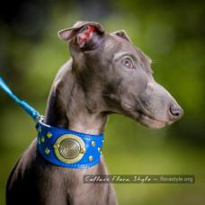 Leather collar, Handmade dog collar, Exclusive collar for Italian Greyhound, Sighthound, Whippet, Saluki, Galgo, Xoloitzcuintli, Windhund | Summer